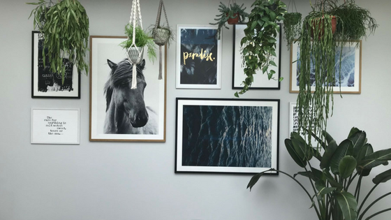 Pictures on a wall with hanging plant baskets