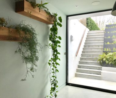 How to bring the outdoors indoors